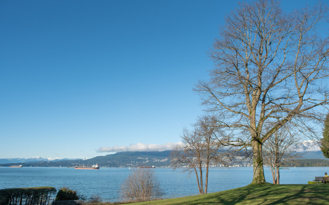 Beautiful Vancouver Engagement Locations